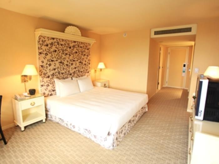 麗景灣酒店的圖片3