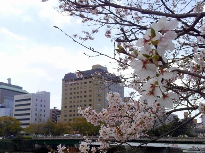 廣島燦路都大酒店的圖片1