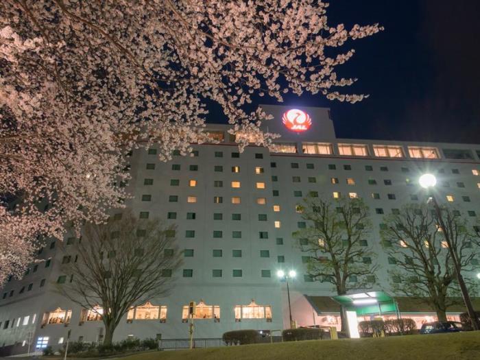 成田日航酒店的圖片4