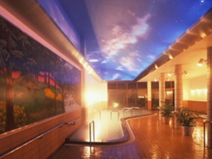 阿蘇別墅公園酒店的圖片3
