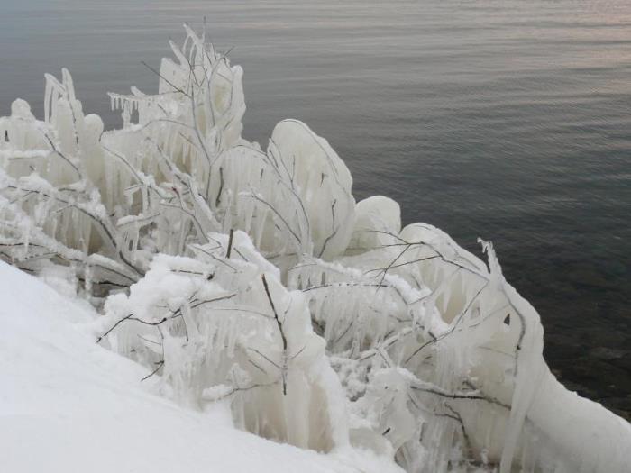 裏磐梯湖畔度假村的圖片5