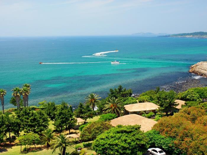 Seaes酒店度假村的圖片1