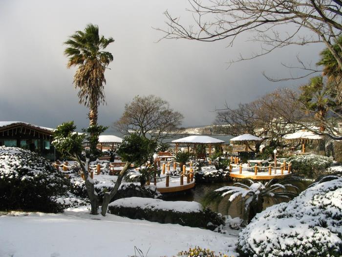 Seaes酒店度假村的圖片3