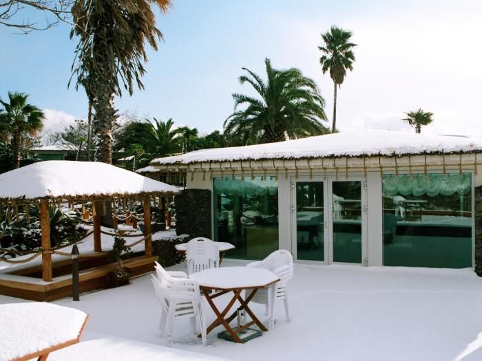 Seaes酒店度假村的圖片4