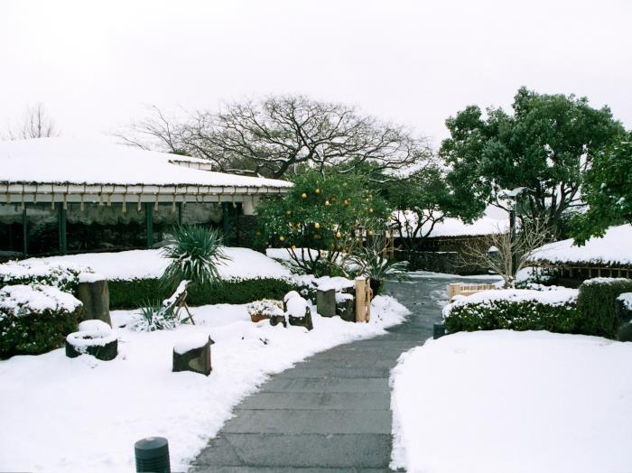 Seaes酒店度假村的圖片5