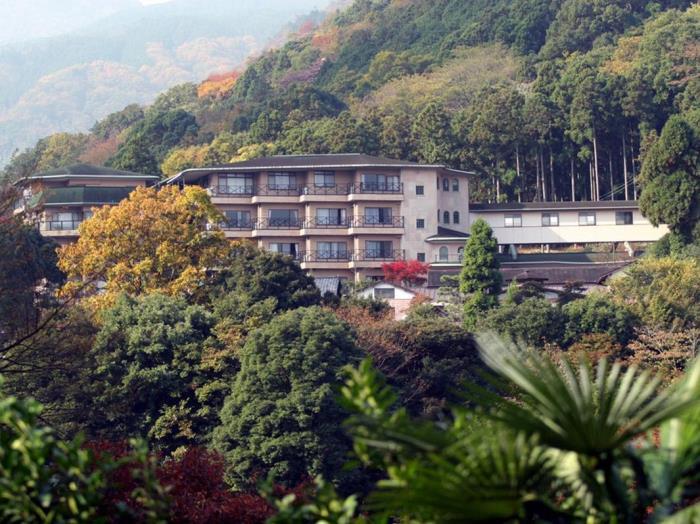 箱根之森岡田酒店的圖片1