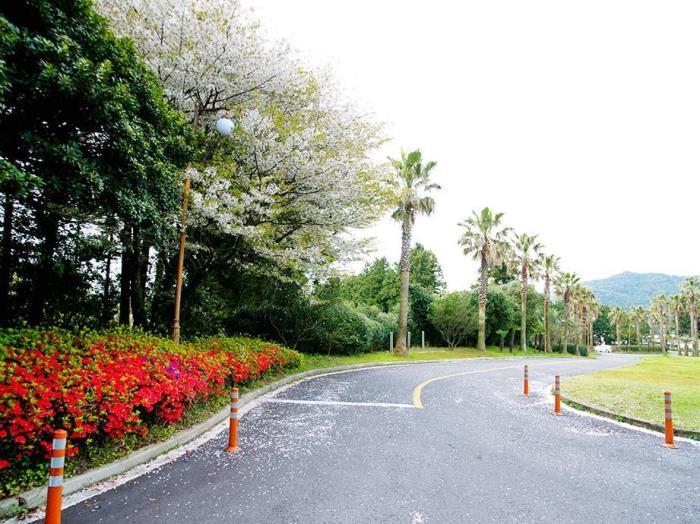 山水度假村 - 濟州的圖片5