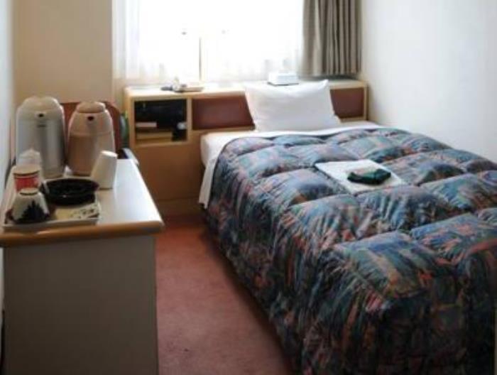 新長野酒店的圖片2