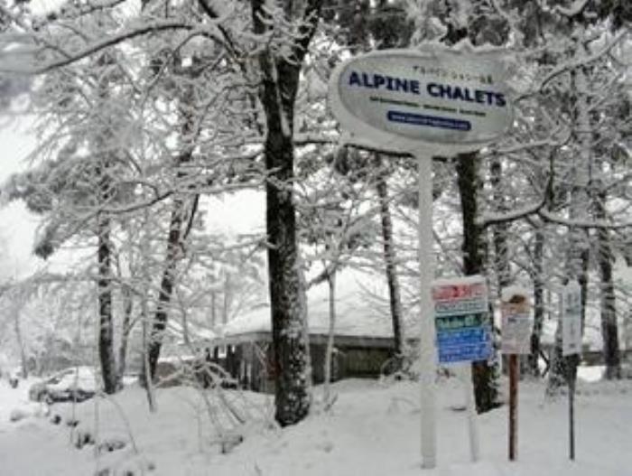 白馬Alpine小屋的圖片3