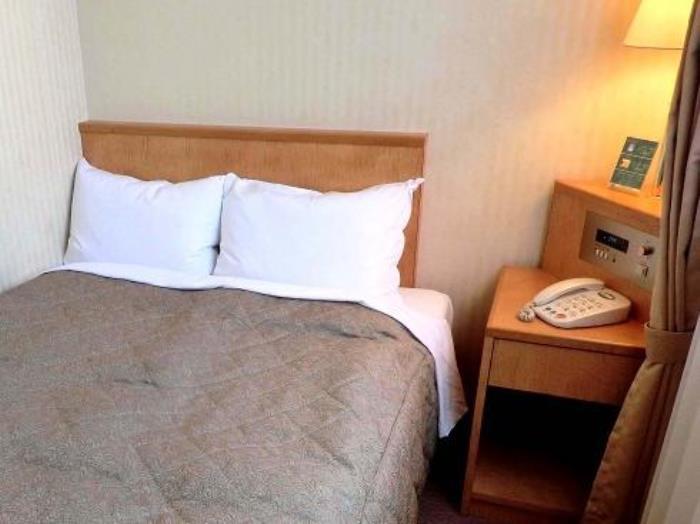 綠色索維林高級酒店的圖片2