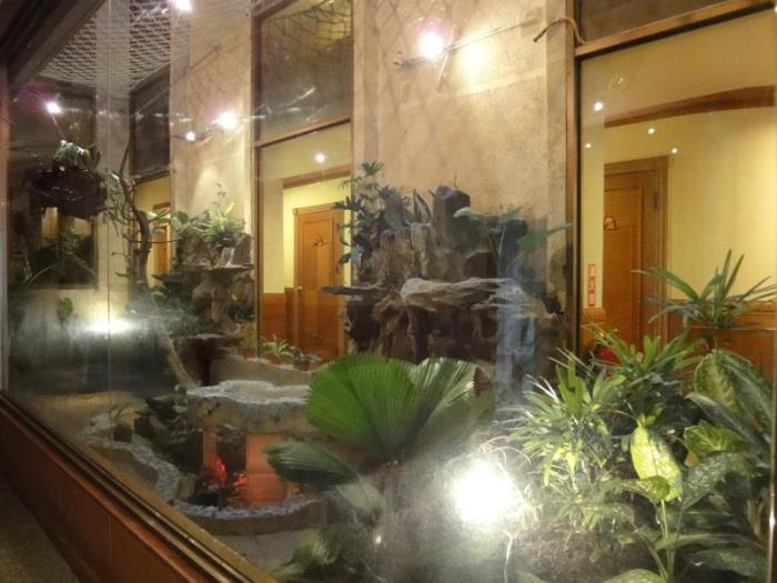 花語旅館的圖片3