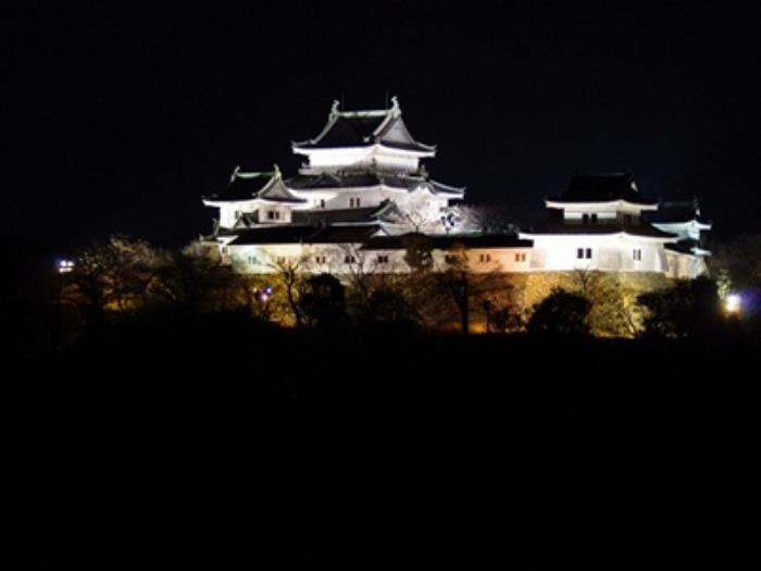 和歌山東急酒店的圖片3