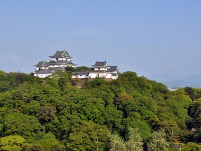 和歌山東急酒店的圖片4
