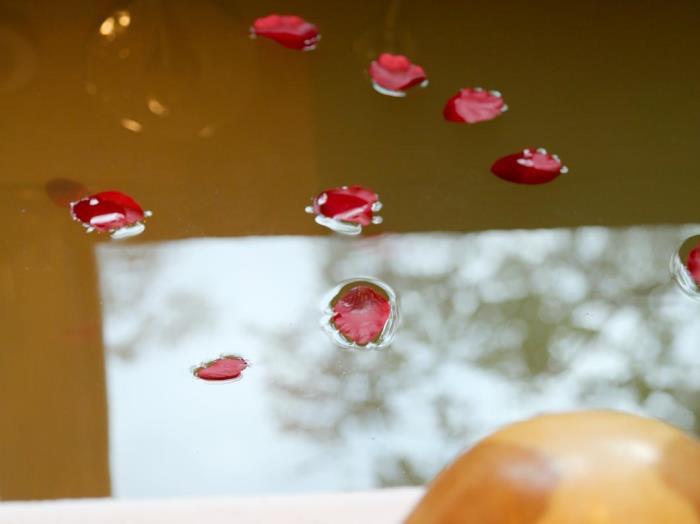 東森海洋溫泉酒店的圖片4