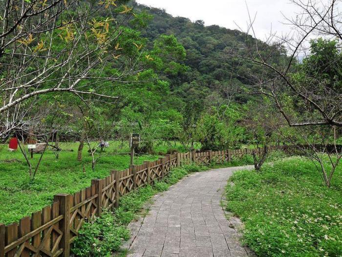立德布洛灣山月村的圖片5