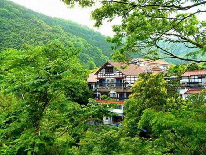 伊豆湯島白壁莊傳統溫泉日式旅館的圖片3