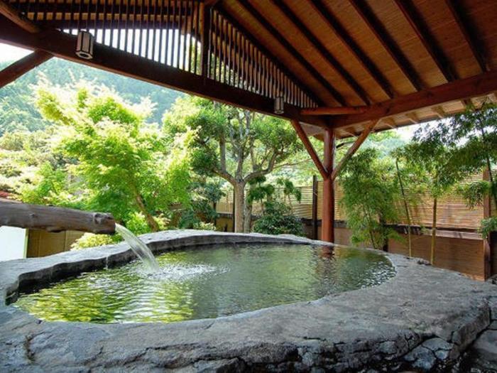 伊豆湯島白壁莊傳統溫泉日式旅館的圖片5