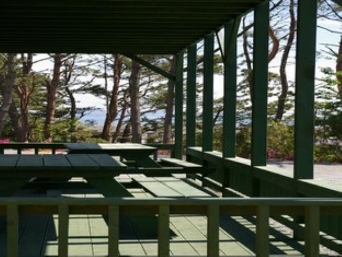 健康度假村的圖片5