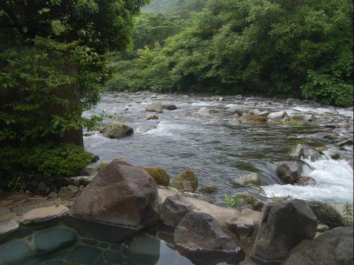 雉子亭豊榮莊日式旅館的圖片4