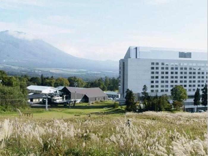 雫石王子大酒店的圖片4