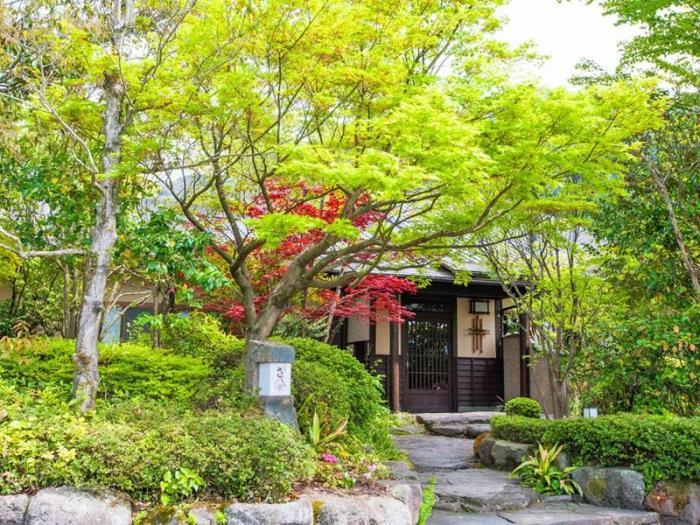 由布院溫泉御宿櫻花亭的圖片1