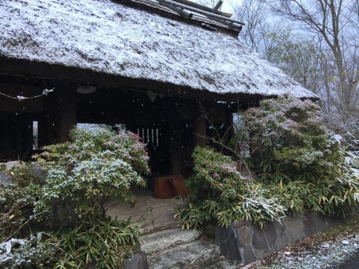 御宿Nogiku旅館的圖片4